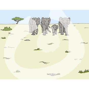 Elefanten-2131.png