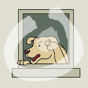 Fabel-Hund3-1873.png
