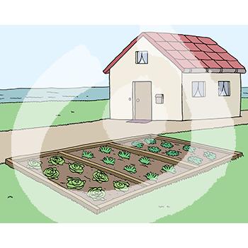 Haus-mit-Garten-1343.png