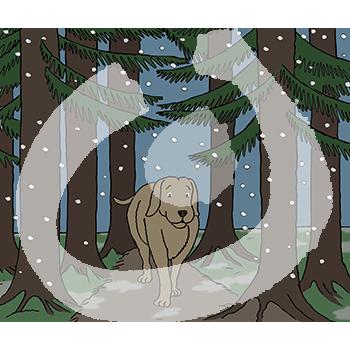 Hund-Wald-dunkel-1460.png