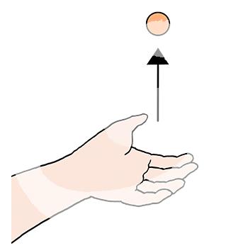 Tischtennis-Abwurf-Ball-1075.png