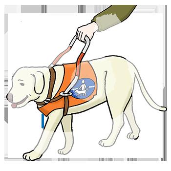 blindenhund.png